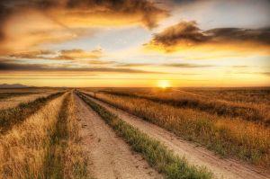 clear-path