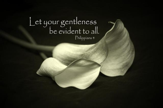 let-your-gentleness-be-evident