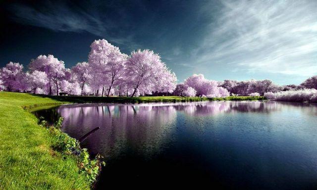 beautiful_nature_01