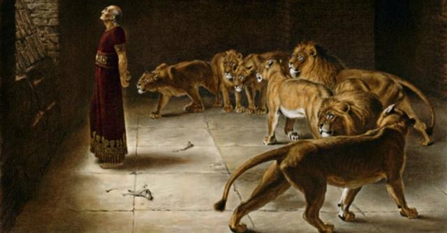 daniel-lions-den-facebook.800w.tn