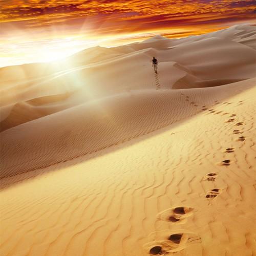 Desert-Footprints-sq-500x500