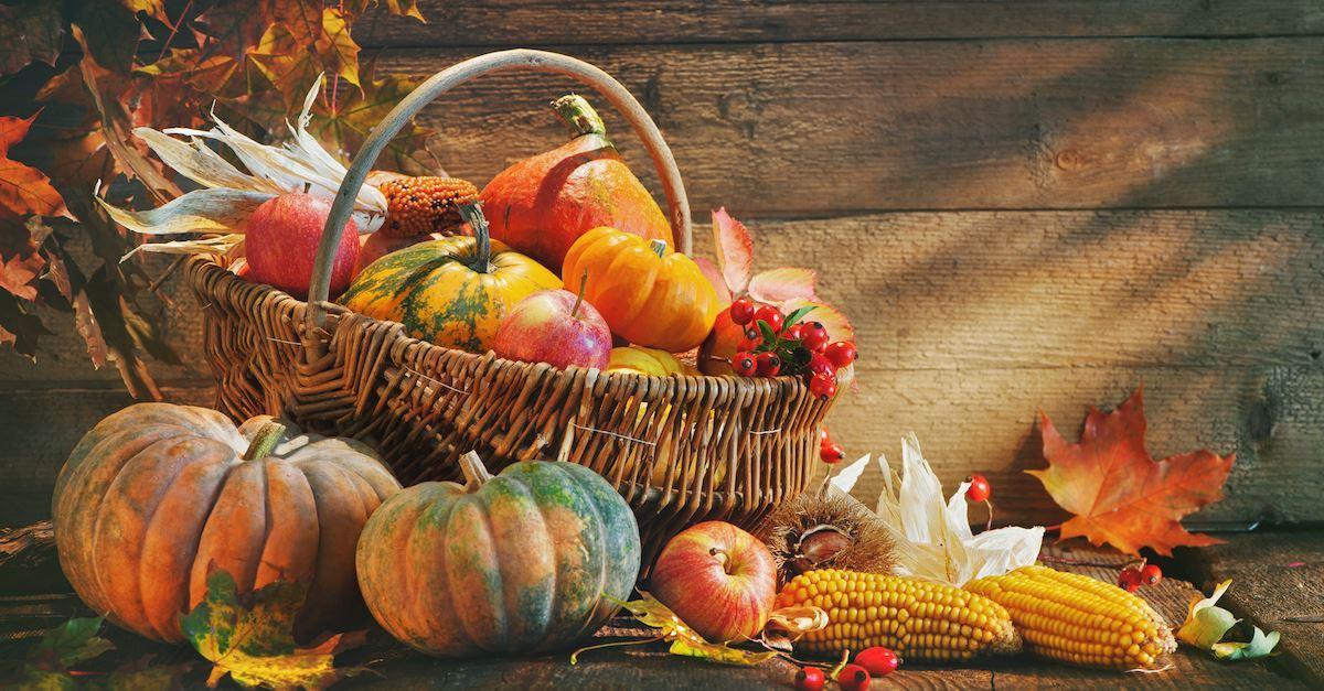 61432-thanksgiving-thinkstockphotos-853514832-alexr.1200w.tn